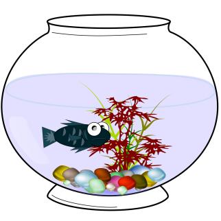 aquarium-156725_1280
