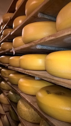 cheese-3081046_640